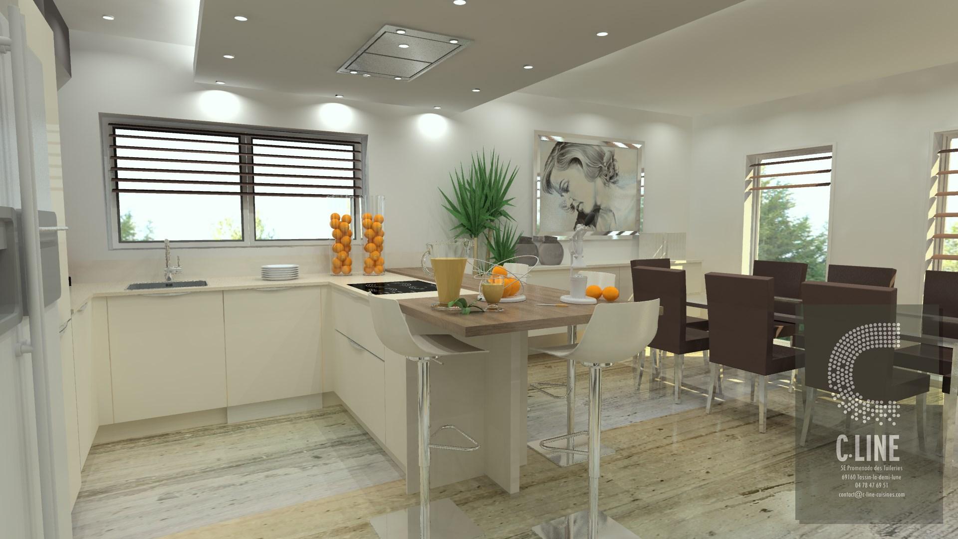 Projet de conception d une cuisine juin 2017 c line for Projet de cuisine